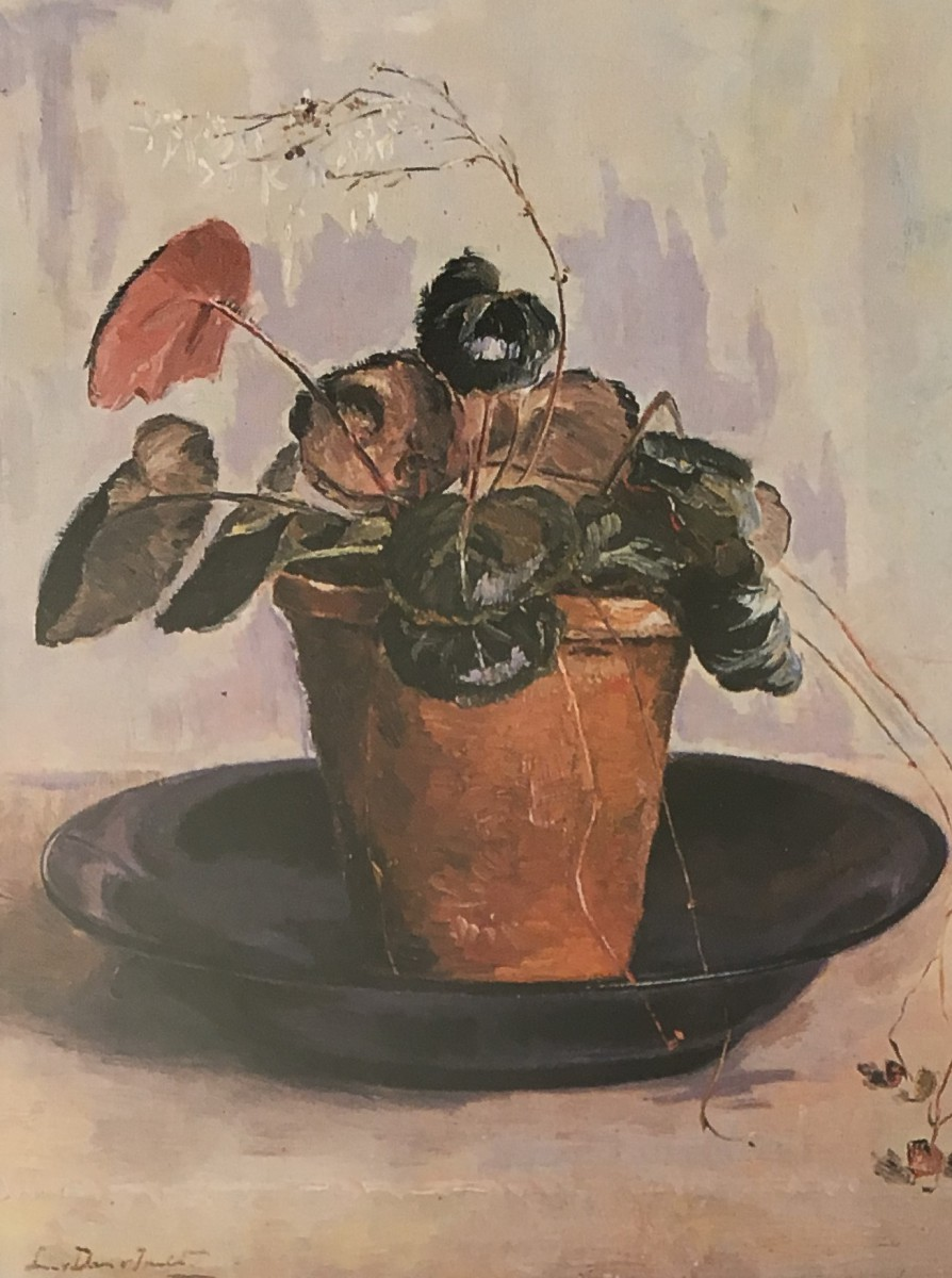 Bladbegonia door Lucie van Dam van Isselt
