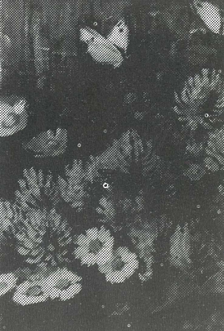 Weidebloemen (ca. 1918-1919) door Lucie van Dam van Isselt