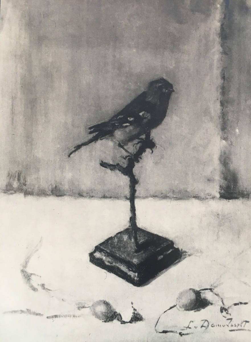 Opgezet vogeltje door Lucie van Dam van Isselt