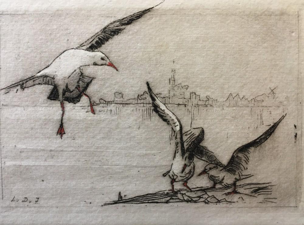Zeemeeuwen bij het water door Lucie van Dam van Isselt