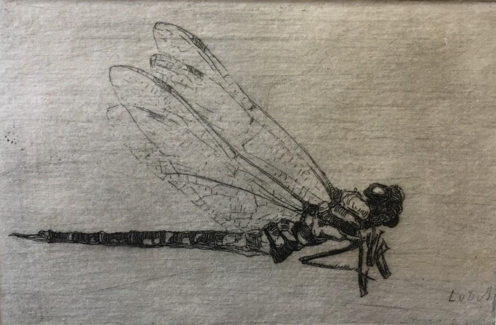 Libelle door (1908-1910) door Lucie van Dam van Isselt