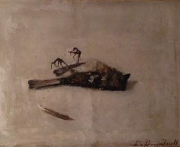 Dood vogeltje door Lucie van Dam van Isselt