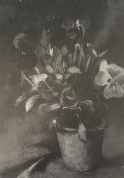 Stilleven met viooltjes door Lucie van Dam van Isselt