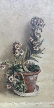 Vetplant in bloei (ca. 1930-1935) door Lucie van Dam van Isselt