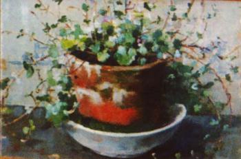 Hangplantje door Lucie van Dam van Isselt