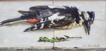 Specht door Lucie van Dam van Isselt