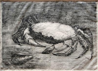 Krab (1908) door Lucie van Dam van Isselt