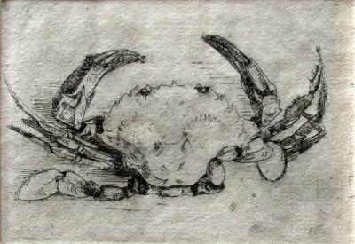 Krab (1909) door Lucie van Dam van Isselt