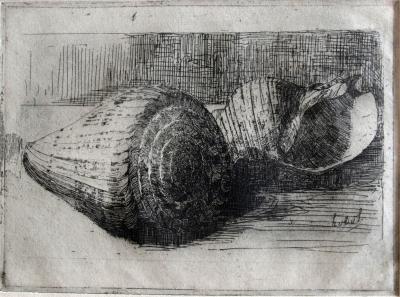 Schelpen (1908-1910) door Lucie van Dam van Isselt