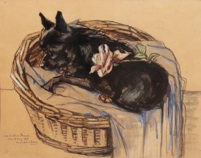 Het Schipperke (1927) door Lucie van Dam van Isselt